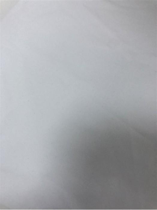 DG-ZFX T加密牛奶絲  成份:88%T 12%OP 克重:120g 規格:160cm  超薄運動布