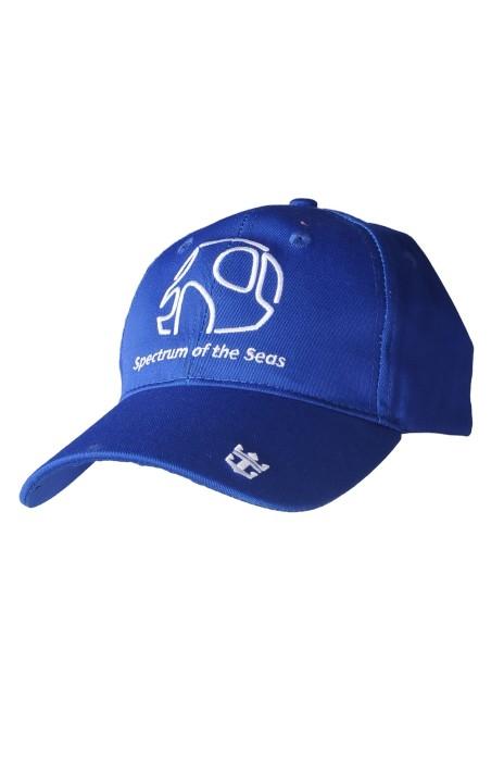 HA320  訂做棒球帽 設計運動帽 可調節  繡花logo  棒球帽生產商     藍色