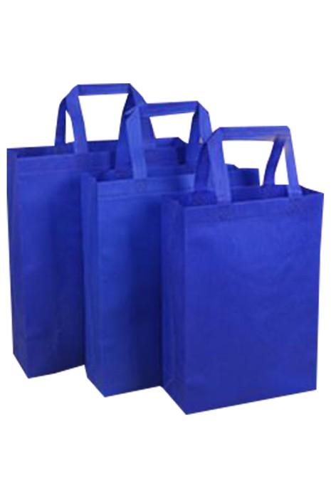 SKEPB009  大量訂製無紡布環保袋 設計多彩色購物袋 環保袋供應商 培訓班 收納袋 社區活動 團體活動