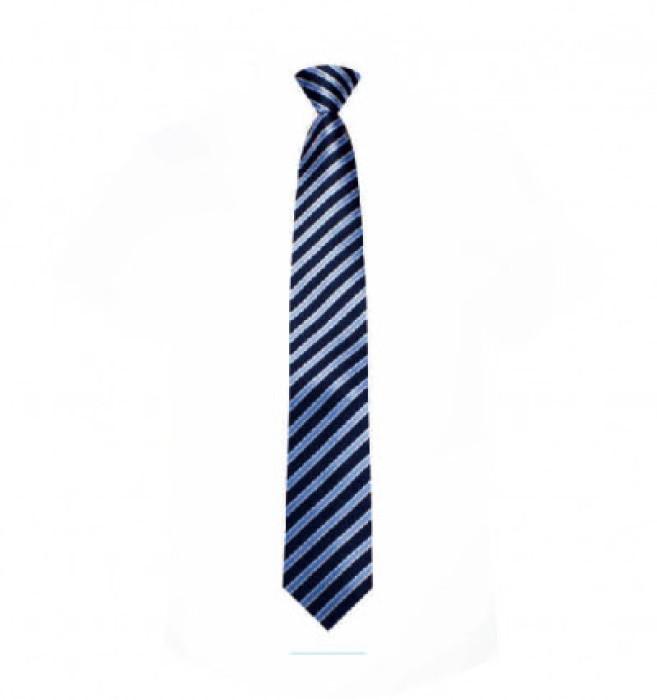 BT050  訂購正裝西裝領帶 大量訂造領帶 領帶供應商