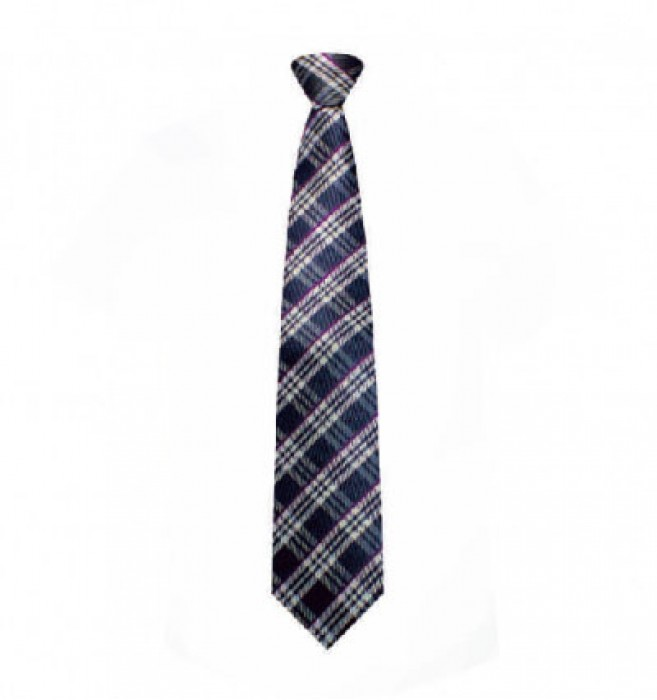 BT039 供應商务工作領帶 網上下單領呔 領帶hk中心