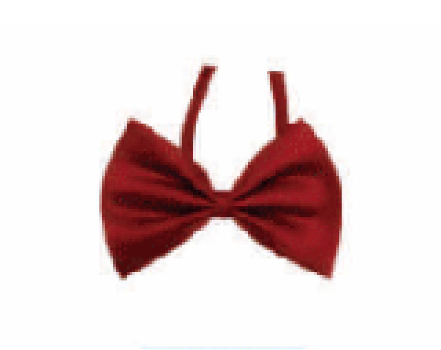 SUBO09 訂做西裝蝴蝶結領帶   網上下單正裝蝴蝶領帶 領結製造商