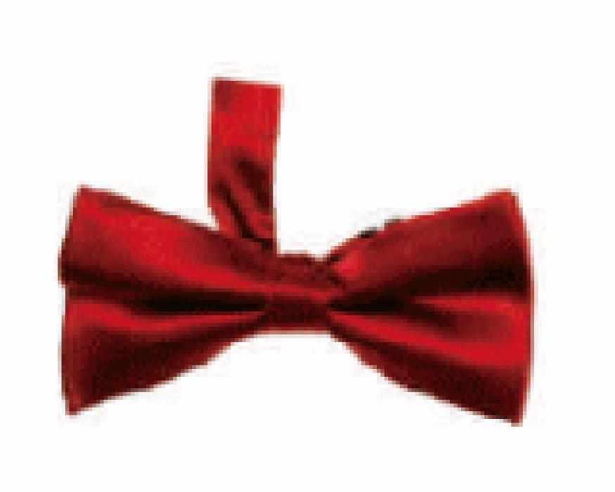 SUBO10 訂製英倫男士領結  供應新郎伴郎結婚禮西裝領結  製作正裝襯衫蝴蝶結  領結製造商