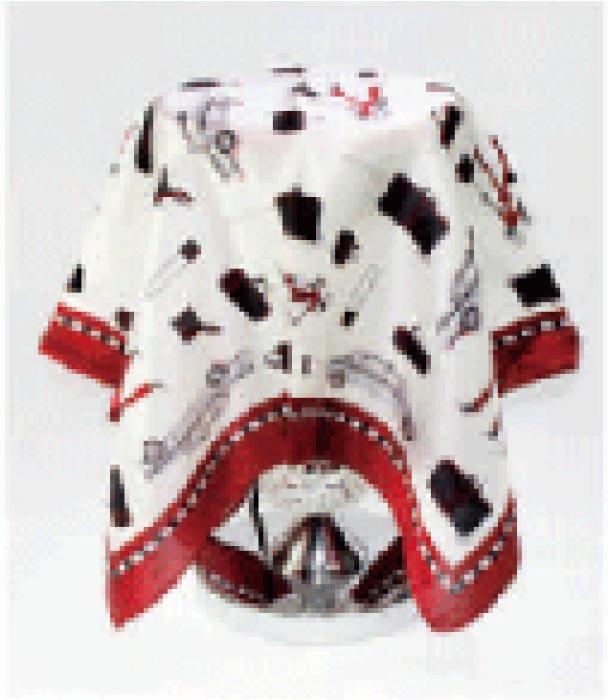 SKN09 訂購真絲絲巾 女士春秋小絲巾 韓國百搭裝飾領巾 高級桑蠶絲絲巾 領巾專門店